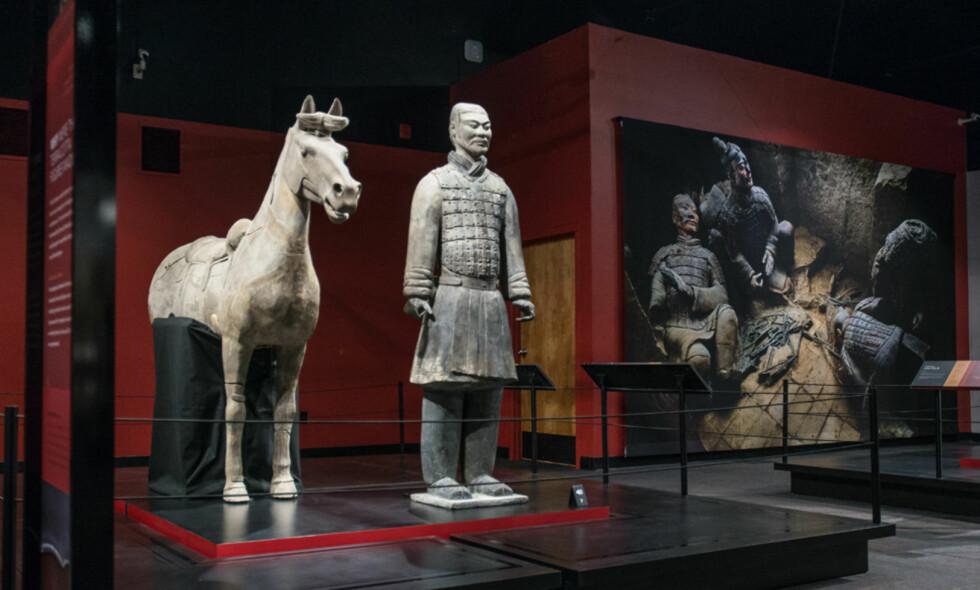 KAVALERISOLDAT: Denne statuen, som er en del av Kinas kulturarv, Terrakottahæren, ble vandalisert av en amerikansk museumsgjest som deltok på en fest etter stengetid i regi av Franklininstituttet i Philadelphia. Foto: The Franklin Institute
