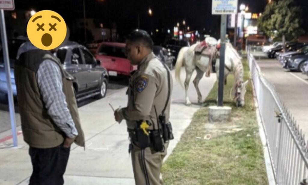 ARRESTERT: En 29 år gammel mann ble i helga arrestert av politiet i California for å ri på en hest på en motorvei i beruset tilstand. Politiet har sladdet bildet selv. Her ser du hesten Guera i bakgrunnen. Foto: Politiet i Santa Fe Springs