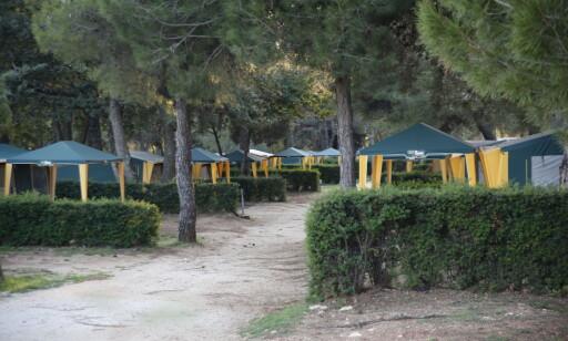TELTGATER: På Lanterna Premium Camping kan du velge mellom luksustelt, og mer enkle varianter. Her er det plass til 10 000 gjester - samtidig. Foto: Tormod Brenna