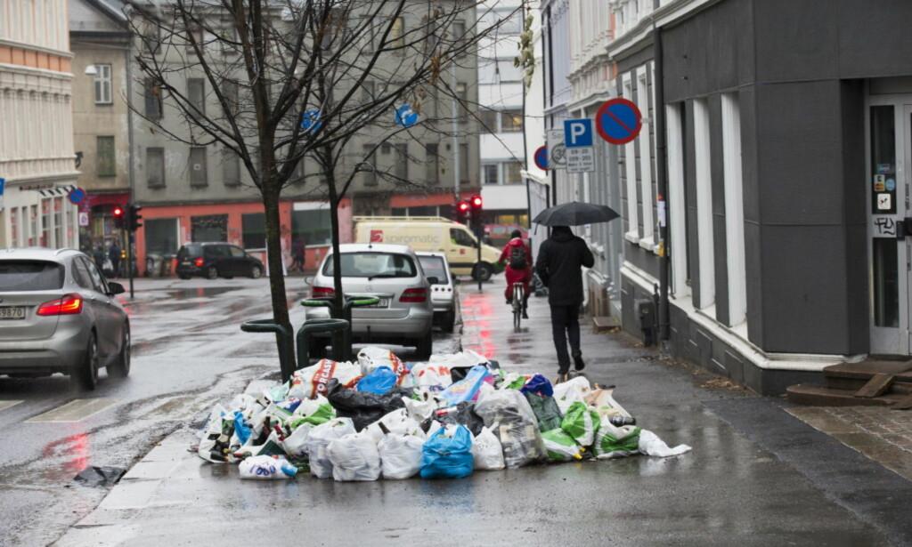 SØPPEL: Dagbladet avdekket at Veireno brøt arbeidsmiljøloven over 2000 ganger, da søpla hopet seg opp i Oslo i fjor vinter. Foto: Terje Bendiksby / NTB Scanpix
