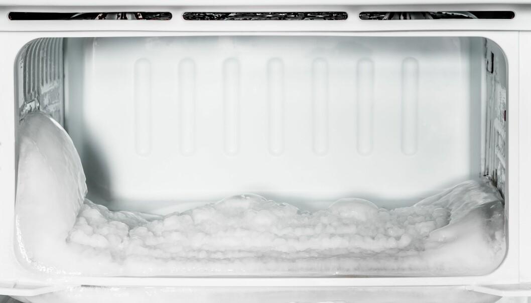 <strong>IKKE I BOD:</strong> Det er med god grunn at fryseboks og kjøleskap ikke må plasseres i boden. Foto: Scanpix.