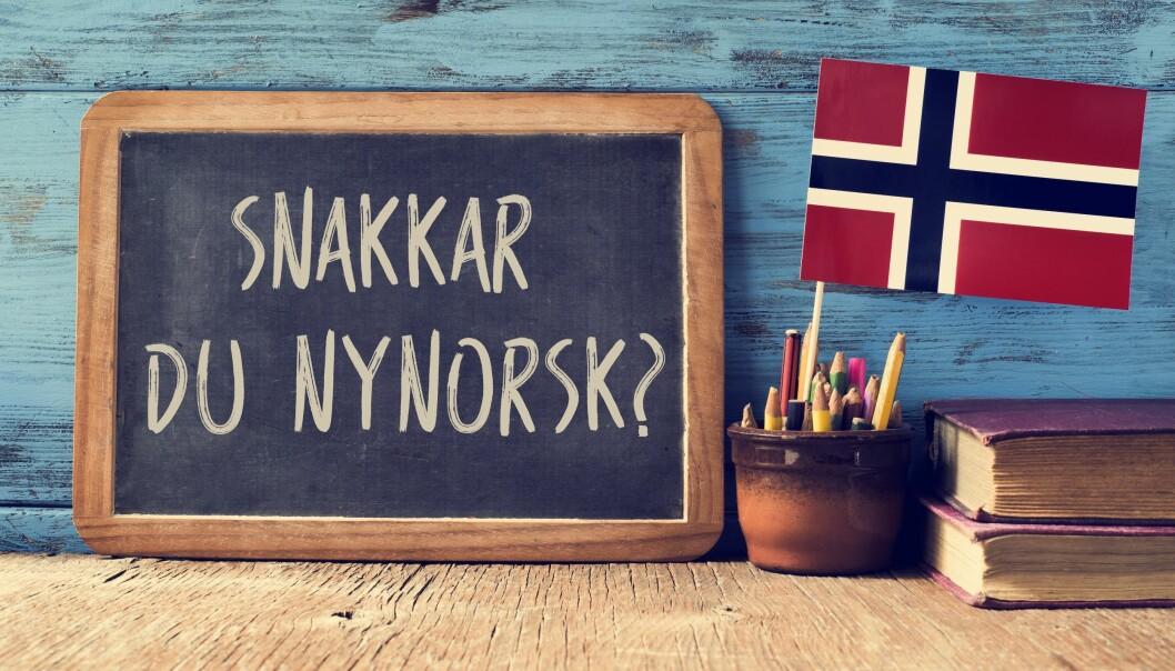 <strong>I ENDRING:</strong> Det norske språket er i stadig utvikling, og nå er det flere ord og fraser som lever på lånt tid. Foto: Scanpix.