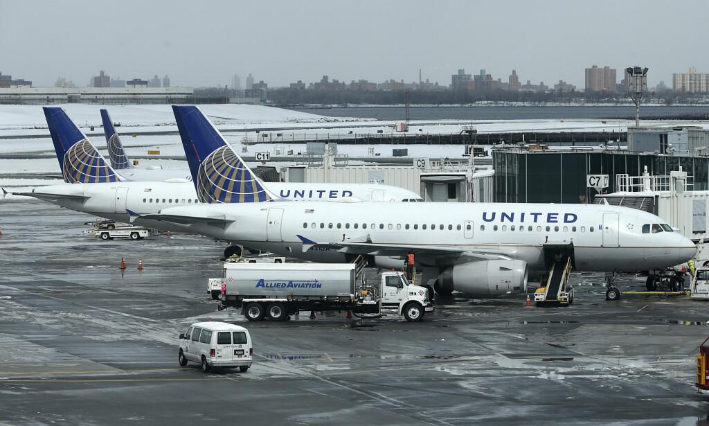 HUNDE-TRØBBEL: United Airlines er i trøbbel igjen, denne gang på grunn av at en hund døde i hattehylla på et fly. Akrivfoto: NTB Scanpix