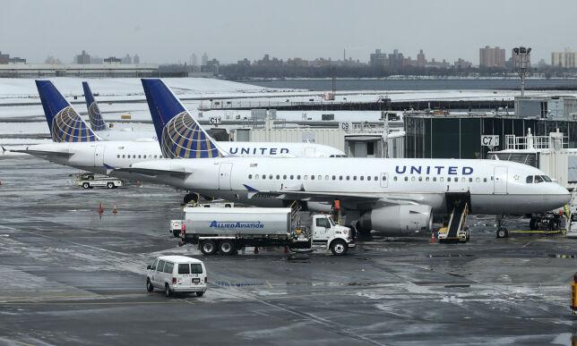 image: Ble beordret til å plassere hund i flyets hattehylle - der døde den