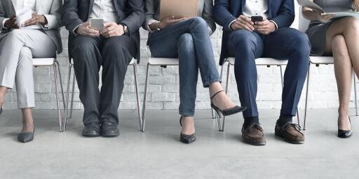 image: Den store jobbsøkerguiden