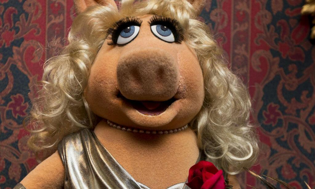 image: Politisk Muppet Show