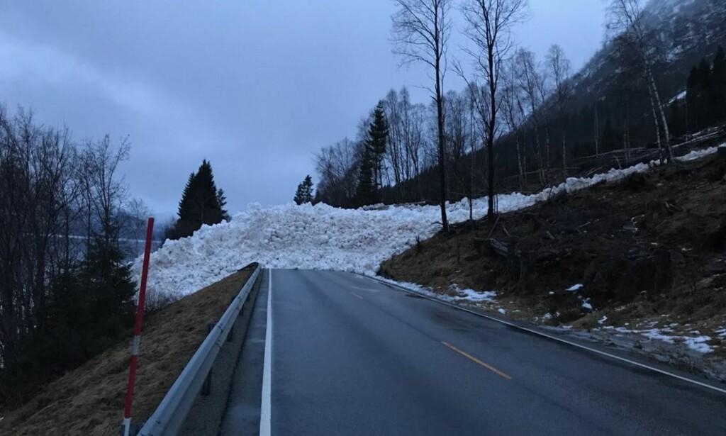 STORT SKRED: Skredet på E39 ved Hornindalsvatnet er mellom 50-60 meter bredt og over fem meter høyt. Foto: Marte Bjørlo
