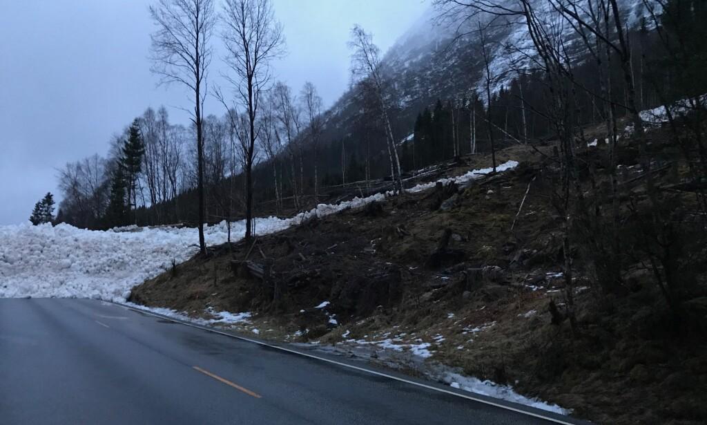 BRATT TERRENG: Det er bratte fjellsider på E39 langs Hornindalsvatnet i Sogn og Fjordane. I tillegg har området blitt rammet av mye nedbør det siste døgnet. Foto: Marte Bjørlo