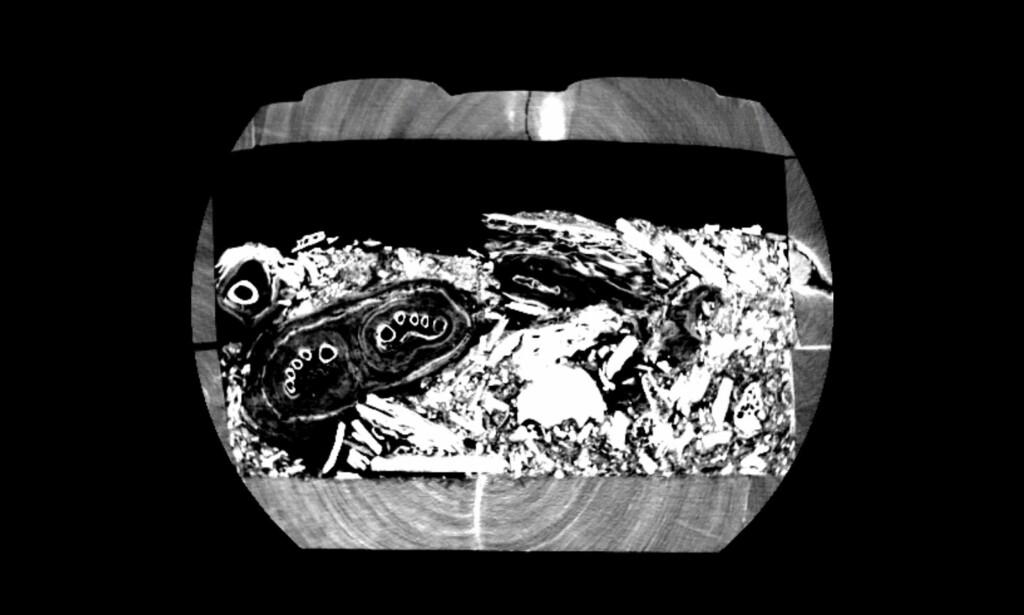 LEVNINGER: EN CT-skanning av en lagret sarkofag fra Egypt ga arkeologene ved Universitetet i Sydney bakoversveis. Foto: Universitetet i Sydney / Nicholson-museet
