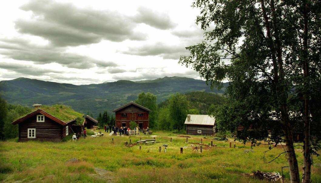 <strong>Klimaversting:</strong> Flå kommune i Hallingdal har Norges høyeste veiutslipp av klimagasser per innbygger. Illustrasjonen er hentet fra Rime gård i Flå. Foto: Heiko Junge / SCANPIX