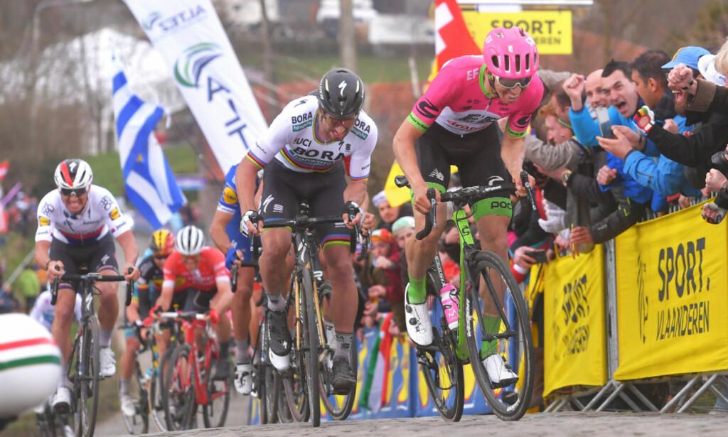 PÅ ETTERSKUDD: Sep Vanmarcke og Peter Sagan hang ikke med da Niki Terpstra gikk til og på hjul satt Zdenek Stybar og Philippe Gilbert og markerte. FOTO: Tim de Waele (TDWSport.com)