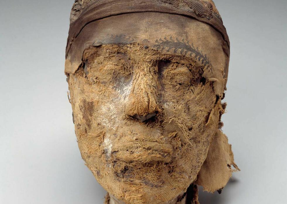 GÅTE: Mumiehodet ble funnet i 1915, og identiteten har lenge vært en gåte. Foto: Harvard University—Boston Museum of Fine Arts Expedition