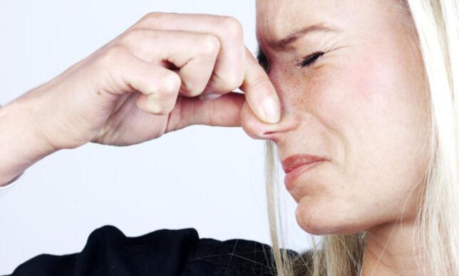 image: Forskere har oppdaget ny lukt - og svaret på hvorfor «alt» lukter likt