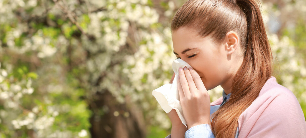 Kraftig start på årets pollensesong