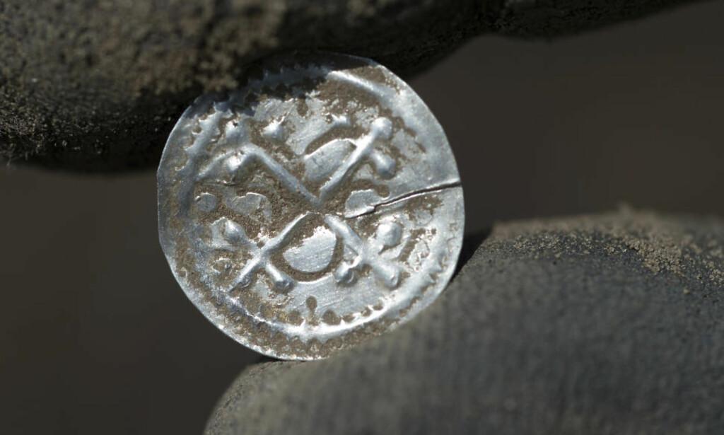 VIKINGMYNT: Denne helgen ble det funnet 600 utskårne mynt i samme område. Foto: Stefan Sauer / NTB scanpix