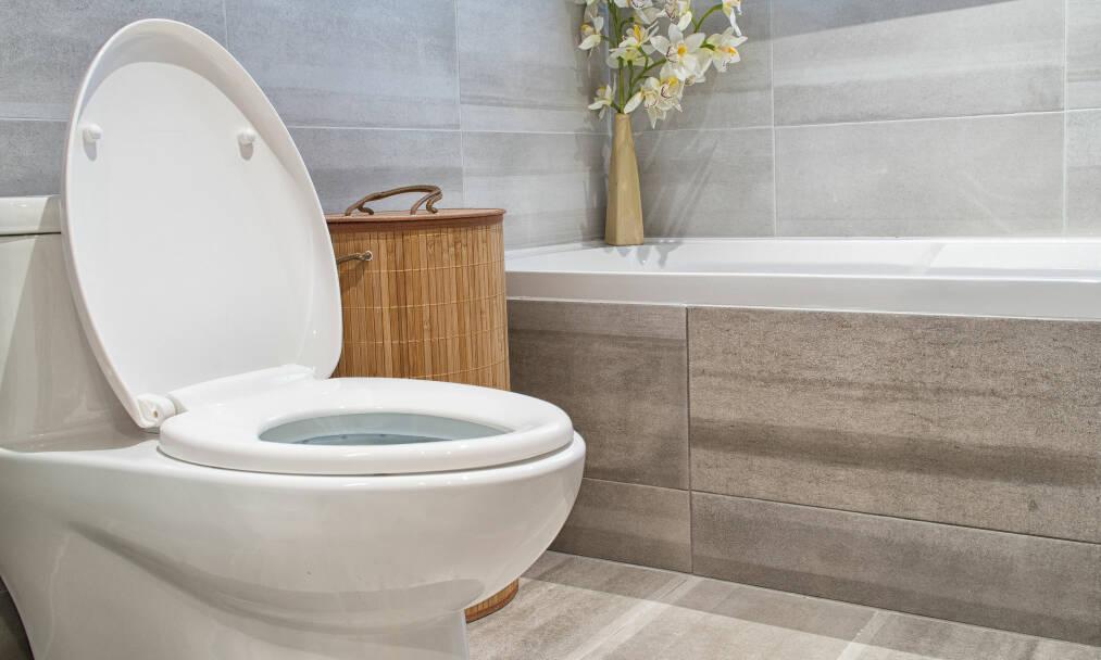 KASTE TING I DO: Det er faktisk bare toalettpapir, urin og avføring som skal nedi. Og alt det andre? Det kan skape trøbbel for oss. FOTO: NTB Scanpix