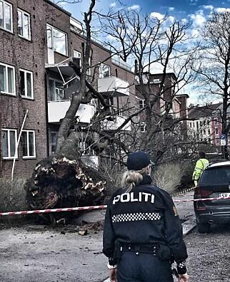 Foto: Tom Stalsberg / Dagbladet