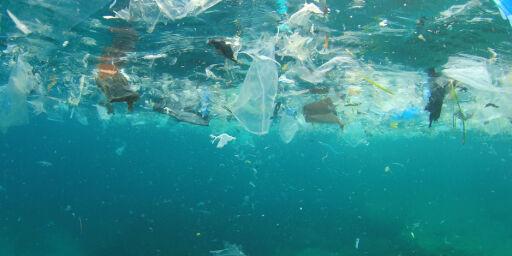 image: Vi må starte med en global dugnad for å rydde opp plast
