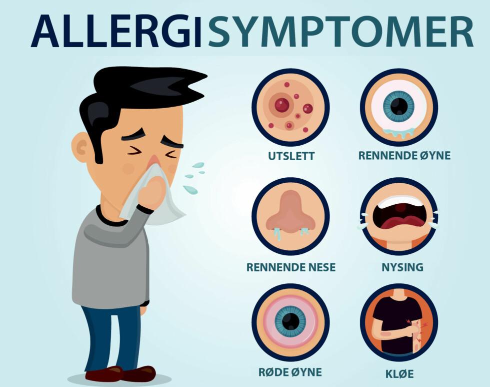 VANLIGE SYMPTOMER VED ALLERGI: Graden av symptomer varierer veldig fra person til person. Foto: NTB Scanpix / Shutterstock