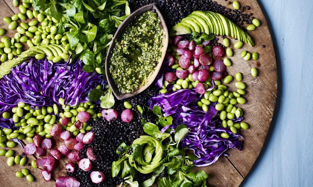 SALAT: Server gjerne en salat på store fat, og anrett ingrediensene hver for seg, så kan alle blande sin egen salat. FOTO: Nina Malling