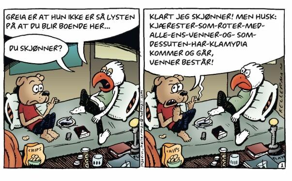 FØRST UT: Dette er den aller første Rocky-tegneseriestripa som ble publisert i Dagbladet 13. oktober 2001. Foto/Tegneserie: Martin Kellerman / Strand Comics