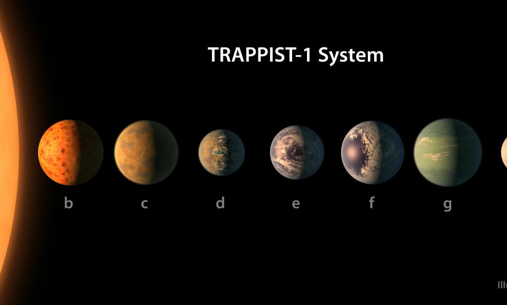 ANNET SOLSYSTEM: En grafisk fremstilling av planetene i solsystemet TRAPPIST-1 i Melkeveien, der syv planeter går i bane rundt en stjerne. Foto: AFP PHOTO / European Southern Observatory