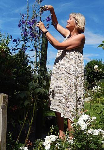 - Planter krever så lite, og gir veldig mye tilbake, sier Grethe Nordhelle. Her klipper hun ridderspore i egen hage. Foto: Privat