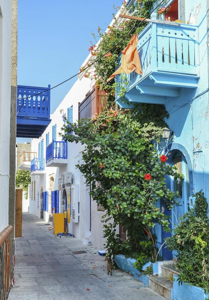FARGERIKE GATER: Innbyggerne på Nisyros legger sin ære i å ha innbydende og fargerike gater. FOTO: NTB Scanpix