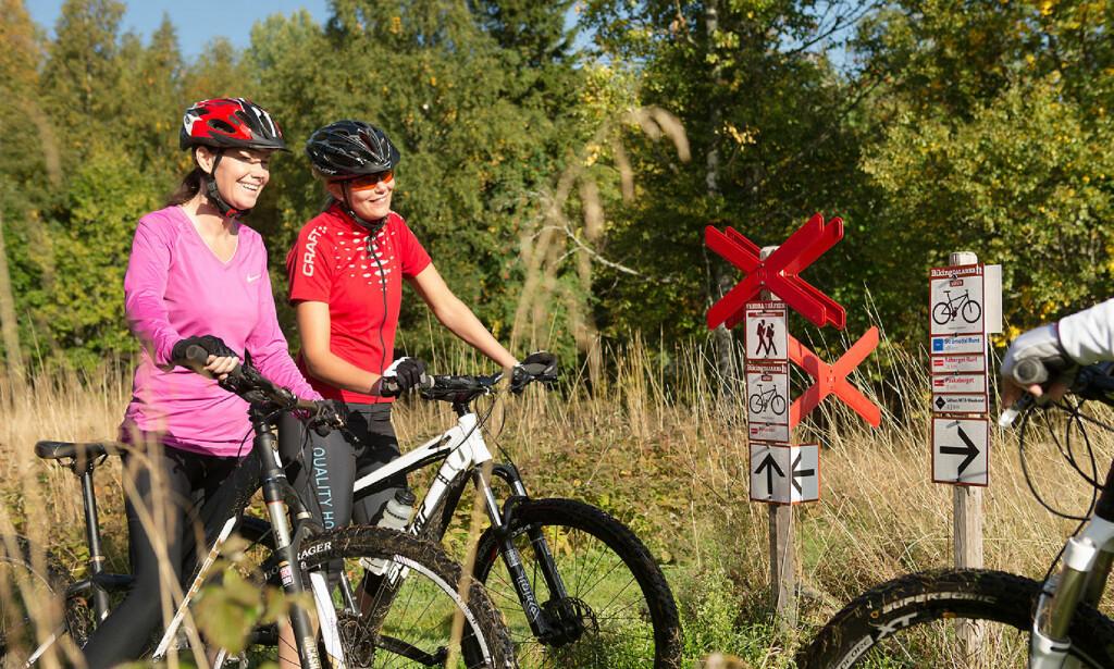 FERIE PÅ TO HJUL: Dalarna har satset stort på mountainbike-opplevelser de siste årene, og her finnes løyper for alle nivåer. Foto: Säfsen Resort