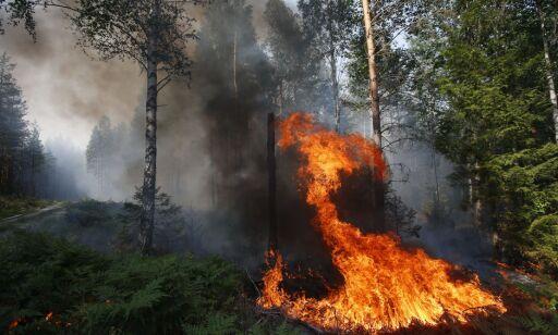 image: Brannvesenet slakter folks oppførsel: - Folk lytter ikke til oss
