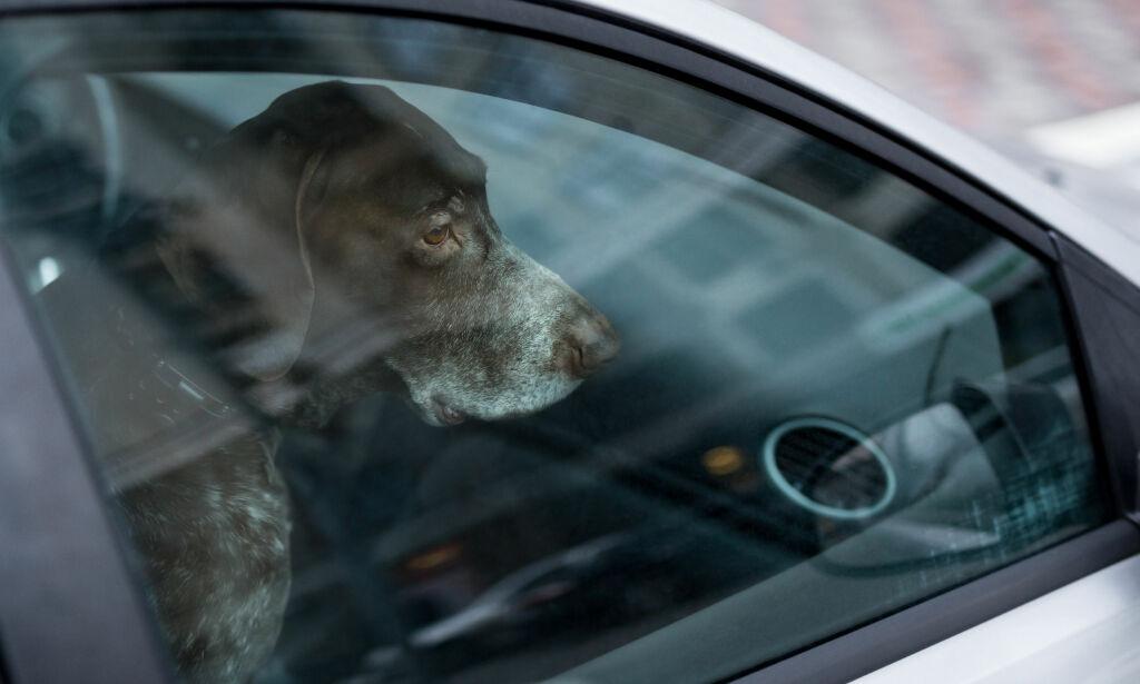 image: Så raskt kan bilen din bli en dødsfelle