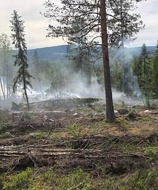 Foto: Brannvesenet, Midt-Hedmark