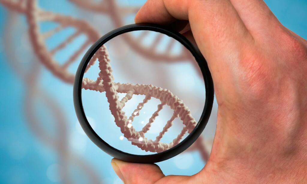 DNA: Gentester kan fortelle om dine arvelige egenskaper og sykdomsrisikoer. Det er arvestoffet (DNA) som undersøkes. Foto: NTB Scanpix / Shutterstock
