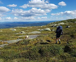 image: Klar for fjelltur? Slik velger du riktig fjellsko