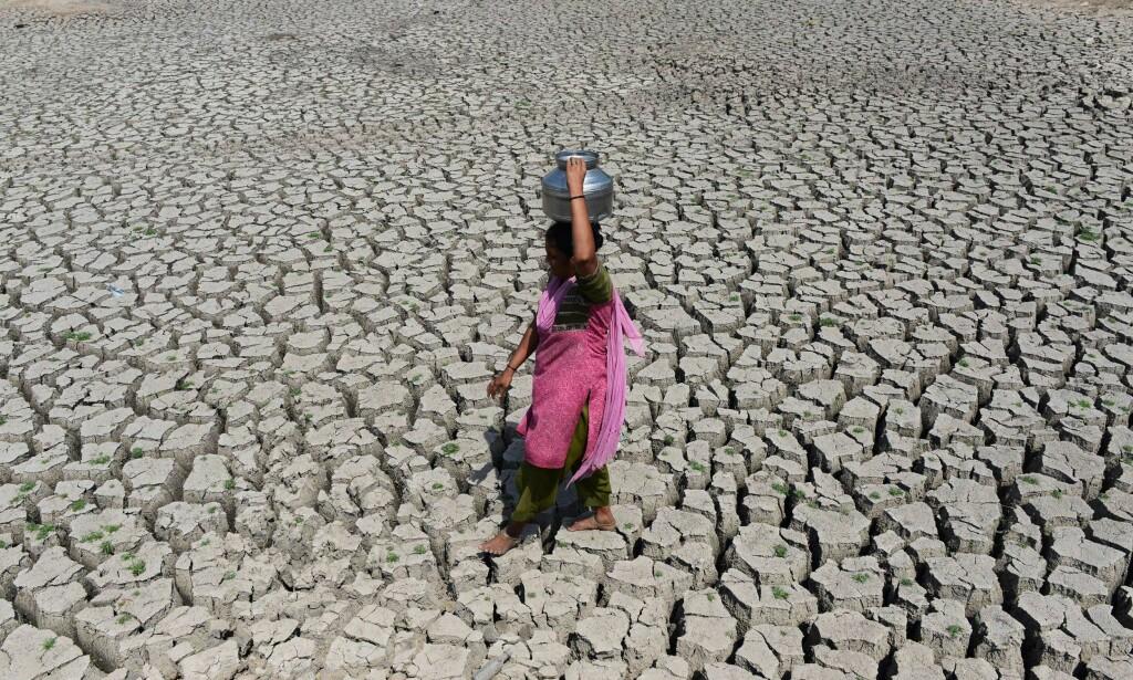 TØRKE: En indisk kvinne som går over en uttørket innsjø i 2016. De siste tre årene har vært de varmeste noensinne, sa Verdens meteorologiorganisasjon i januar 2018. Foto: AFP/ SAM PANTHAKY/NTB Scanpix