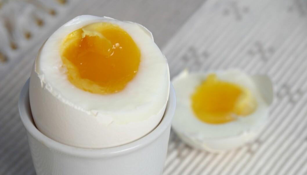 5 ting som kan skje med kroppen om du spiser egg hver dag