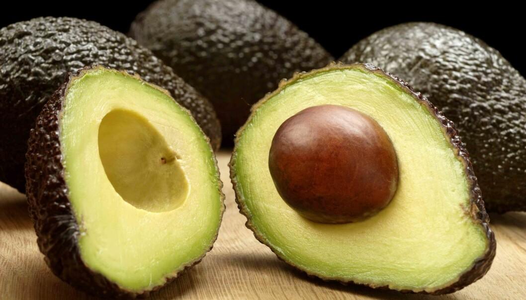5 grunner til at du bør spise avokado hver dag