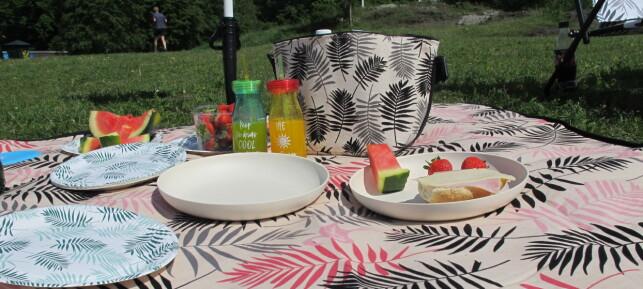PIKNIK I DET FRI: Å spise ute i det fri er herlig på sommeren. Putt noe godt i piknikkurven, rull ut pleddet og nyt lunsjen eller frokosten i friluft.