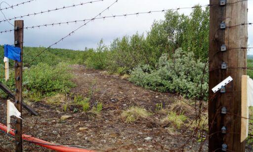 image: Ødela grensegjerde mellom Norge og Russland - er satt i fengsel