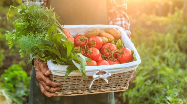 NATURLIG: De beste og de mest naturlige ingrediensene får man ved å ikke bruke tilsetningsstoffer eller kjemikalier.