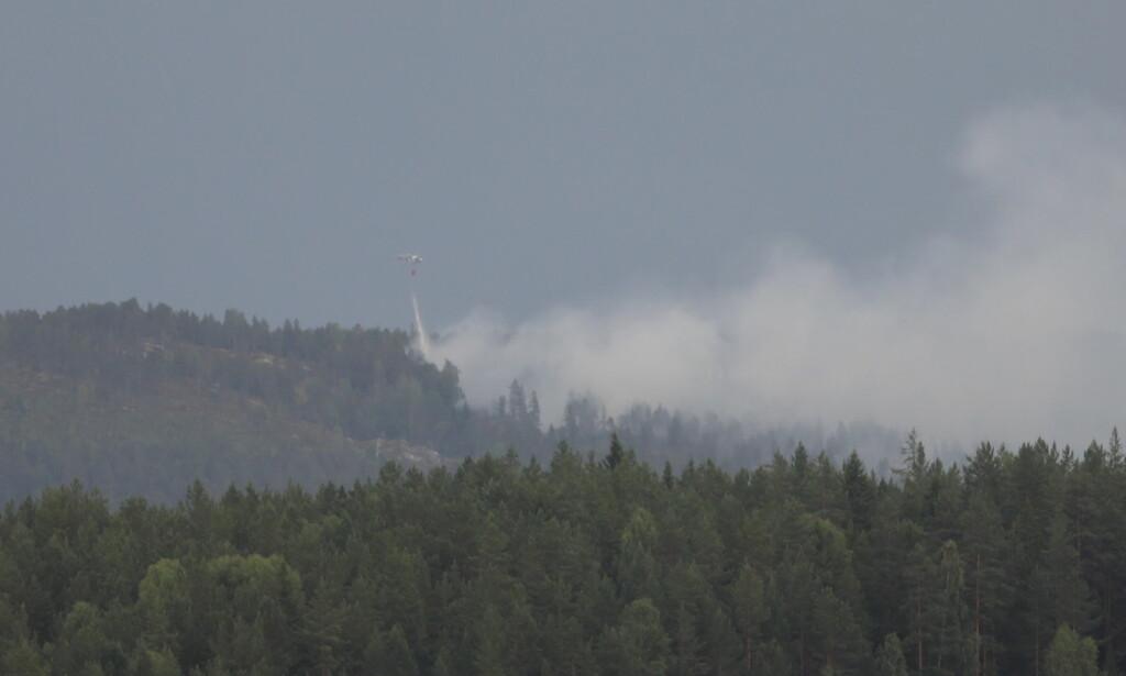 BRANN: Helikopter er i gang med slokking av skogbrannen ved Elgsjø i Notodden kommune. Foto: Christian Roth Christensen / Dagbladet