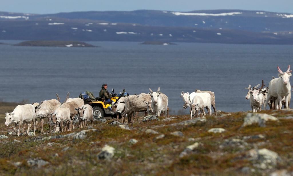 image: La oss snakke mindre om Finnmark og mer om Akershus