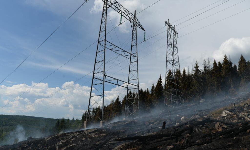 BRENNER GODT: Området under høyspentmastene er kullsvart, og alle trær er brent ned.