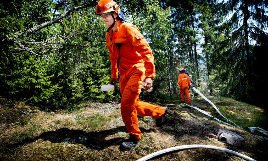 EKSTREM SITUASJON: På grunn av det svært tørre terrenget, er det lite som skal til for at det tar fyr. Fredag innførte brannvesenet i Telemark totalforbud mot all bruk av ild, inkludert røyk.