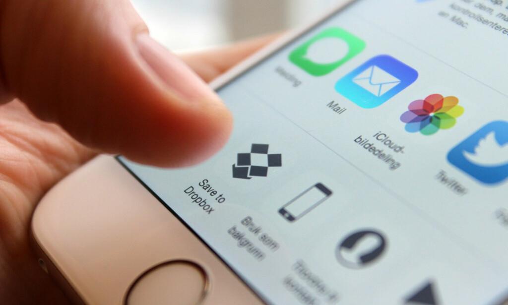 KONKURRENT: Dropbox har et godt grep om markedet for nettlagring. Den er ikke like enkel å bruke som Google Foto eller iCloud, men har den fordelen at den fungerer helt uavhengig av Apple og Google. Foto: Kirsti Østvang