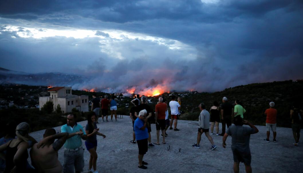 MINST 80 DØDE: Minst 80 personer har omkommet i de kraftige skogbrannene i Hellas. Her et bilde av personer som evakuerte til en høyde nær Rafina mandag, da brannen herjet som verst. Foto: Reuters / NTB Scanpix