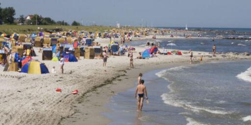 image: Advarsel om giftige alger i vannet ved populære badestrender i Danmark