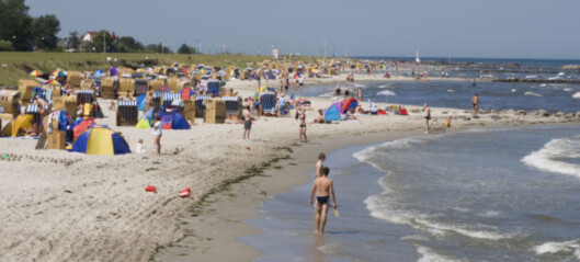 Advarsel om giftige alger i vannet ved populære badestrender i Danmark