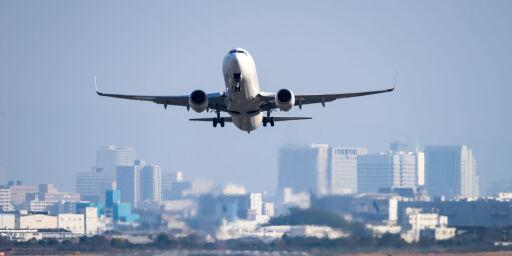 image: Hund med kreativt fluktforsøk tvang rutefly til å nødlande
