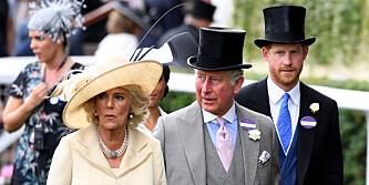 - Ikke syns synd på meg og William, syns synd på Camilla